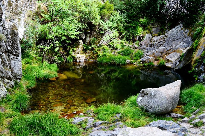 Serra da Estrela Beautiful Green Waterclean Mountain Nature Non-urban Scene Relax