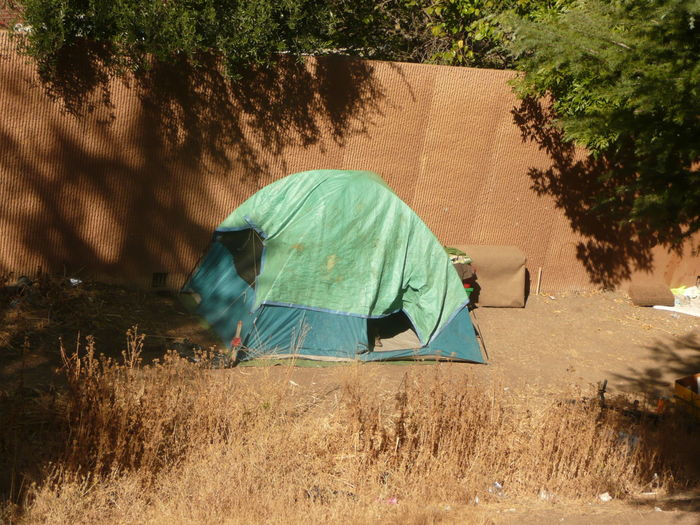 Aqua colored tent at homeless encampment on Branham lane,san Jose October 10,2018 Adventure Aqua Day Environment Field Full Length Grass Homeless Homelessness  Land Landscape Leisure Activity Life Choices Lifestyles Nature Outdoors People Plant Poverty Real People Rear View Sound Wall Sunlight Tent Tree