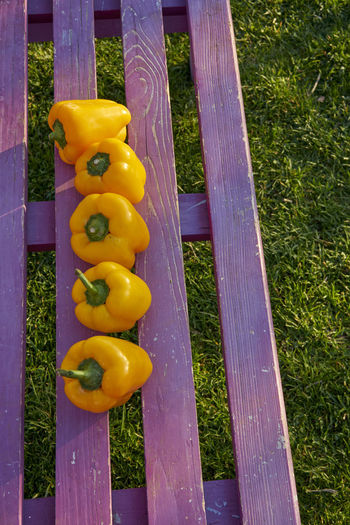 Barrier Boundary Close-up Day Fence Field Food Food And Drink Grass Green Color High Angle View In A Row Multi Colored Nature No People Outdoors Plant Purple Vegetable Wood - Material Yellow