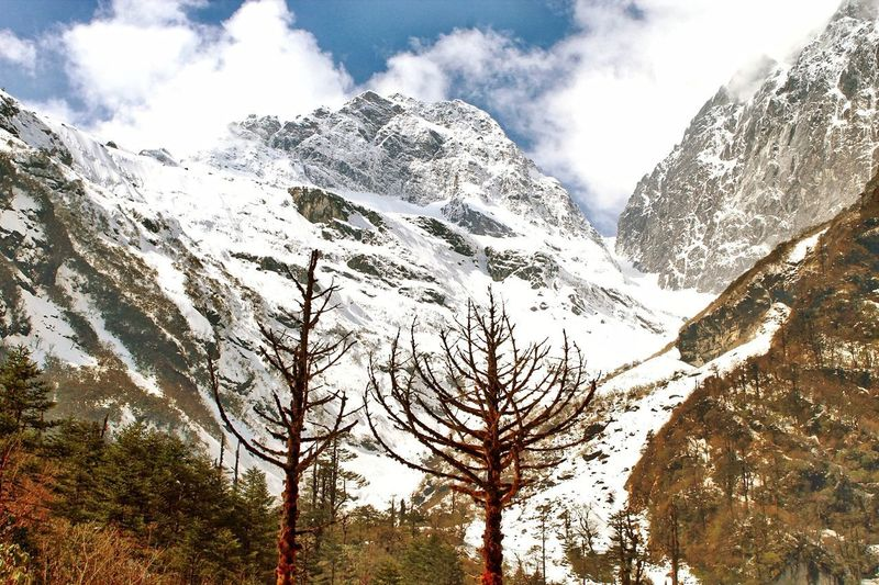 Snow Clad mountains Sky Tree Winter Snow Forest Mountain Wilderness Pine Tree Mountain Peak Stay Out Tranquil Scene Cold Temperature Snowcapped Mountain Pinaceae Outdoors Landscape No People Mountain Range Non-urban Scene Nature Tranquility Beauty In Nature Scenics - Nature Environment Day
