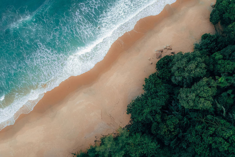 Beauty In Nature Water Land Scenics - Nature Sea High Angle View No People Plant Green Color Nature Tree Motion Aquatic Sport Beach Day Non-urban Scene Outdoors Sport Power In Nature
