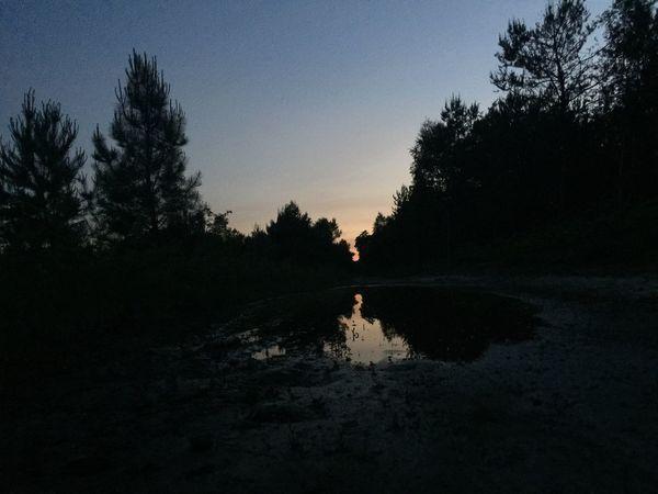 Running 🏃🏾♀️ Sunset Nature Landscape Mirror No Filter
