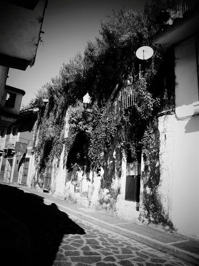 Black And White Architecture Belleza Callejón Jalapa,veracruz Conociendo México Day Colectivo Rollo Jarocho Grupo De Fotógrafos Veraruzanos Fotopaseos Nuestras Flores Balcones Floridas