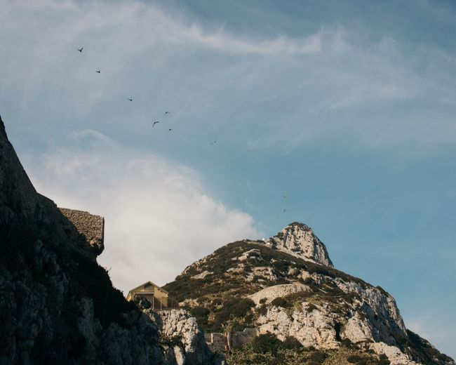 Low angle view of birds flying over mountains against sky