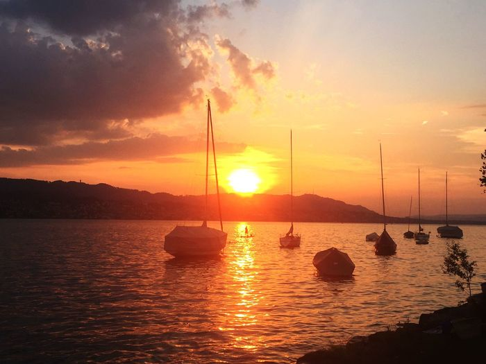 Sunset @ Lake Of Zurich Zürichsee Switzerland Sun Water Reflection Beauty In Nature Scenics Orange Color Nature Cloud - Sky Tranquility Outdoors Sailboat