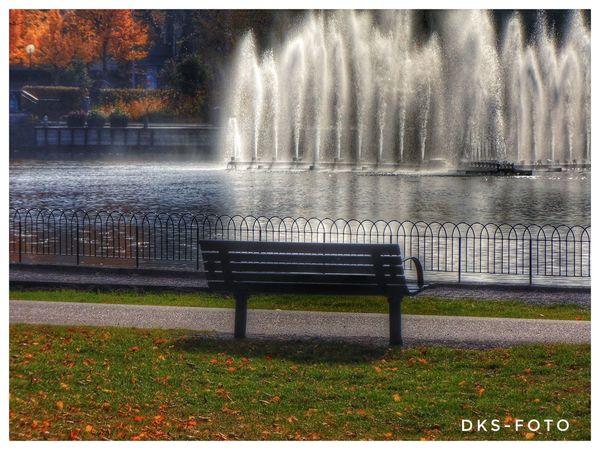 Eskilstuna-streetphotography Sweden The True Story Soffan Water Lake Tree Grass