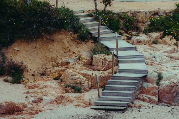 No People Nature Outdoors Day Staircase Steps And Staircases Architecture Direction The Way Forward High Angle View Railing Built Structure Plant Footpath Absence Tree Leadership Empty Wood - Material Beauty In Nature Beach