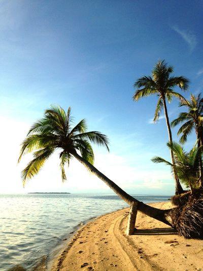 Life Is A Beach Island Life Eyeem Philippines