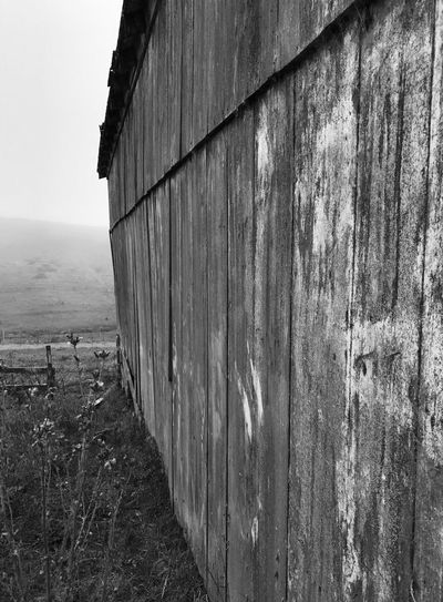 Built Structure Building Exterior Architecture Outdoors No People Weathered Day Corrugated Iron Barrel Sky Nature Wine Cask Blackandwhite Barn Wood - Material Pt. Reyes National Seashore Inverness, Calif Scenics Marin County CA