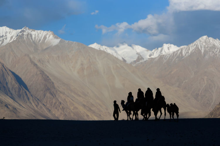 Camel Ride in Nubra Mountain Scenics - Nature Mammal Sky Group Of People Beauty In Nature Domestic Animals Real People Animal Themes Mountain Range Animal Group Of Animals Nature Environment Domestic Livestock Animal Wildlife Leisure Activity Land Horse Riding Outdoors