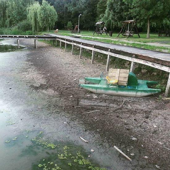 Lake Vekeri Drought Debrecen 2015  Summer