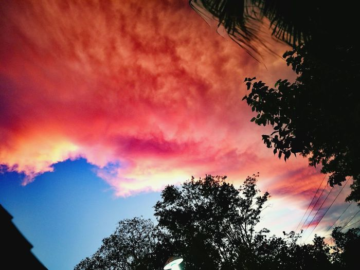 Paso Yobai Sky Beauty Colors Paraguay ♥