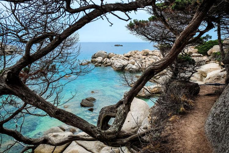 Bootssteg Jacht Meer Strand Urlaub & Reisen Boot Day Nature No People Outdoors Sardinien Schönste Strände Sea Sky Sommer Sonne Sonnenschein ❤ Türkises Wasser Water