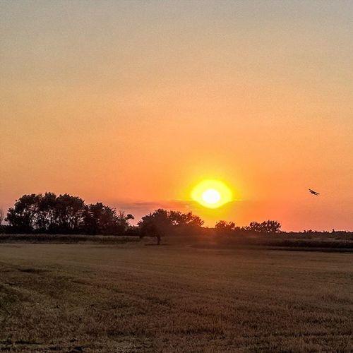Heat Viewmysunset Sunset Heat Plane Antonov Hungary HDR Ig_worldclub Istagrammers Mik Lumia Lumia930 Allumians WindowsPhonePhotography Hdr_lovers Sunsetmadness Sunset_stream Ig_hun