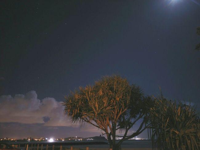 Niiiice night. Night Photography Long Exposure Night Currumbinbeach GoldCoast No People Oppor7s Beautiful Outdoors Tree Tropical Climate Water Summer Sky Moonshine Palm Tree