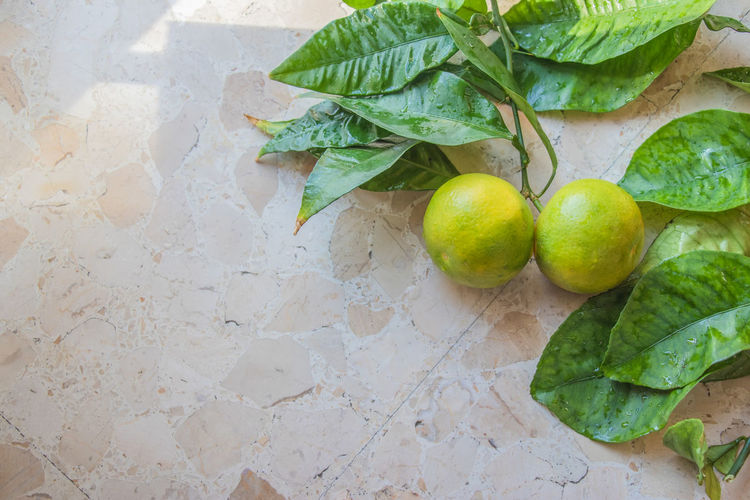 Food And Drink Healthy Eating Food Green Color Freshness Leaf Wellbeing Plant Part Fruit High Angle View Citrus Fruit No People Still Life Lemon Table Close-up Indoors  Nature Directly Above Plant Ripe Sour Taste Vegetarian Food