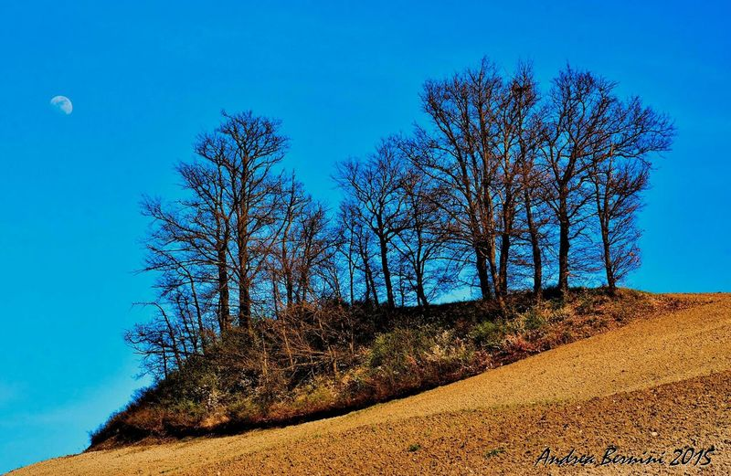 BigBiggerBiggest OpenEdit Italy Relaxed Atmosphere Nature_collection Photooftheday Nature Solitude