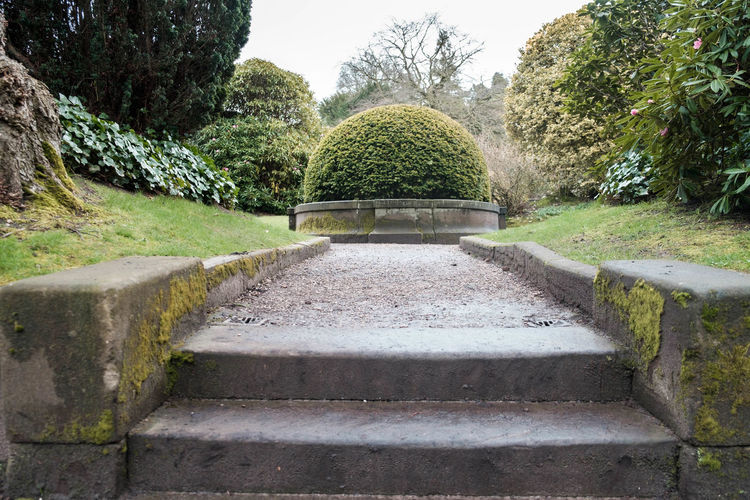 Architecture Building Exterior Built Structure Clear Sky Day Footpath Formal Garden Green Color Growth Nature No People Park - Man Made Space Plant Staircase Steps Steps And Staircases Stone Material Sunlight The Way Forward Tree