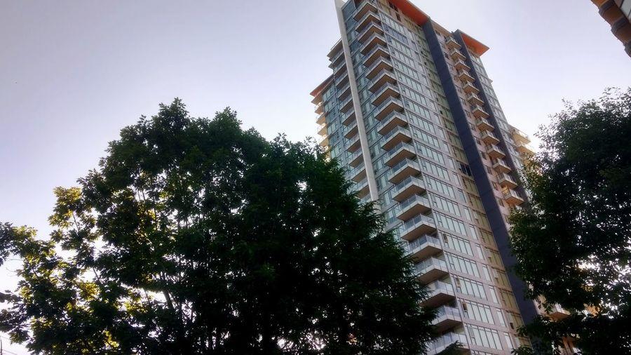 Apartment Light