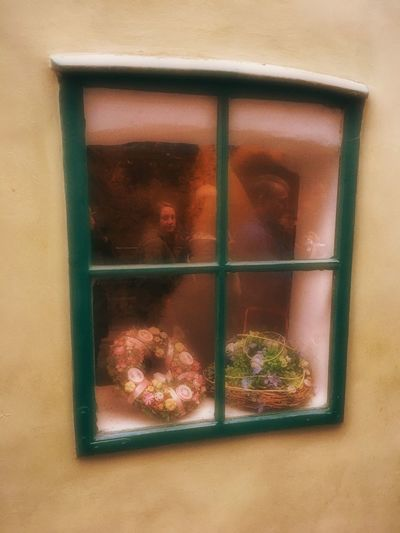 Prague Czech Republic Close-up Day Domestic Domestic Animals Glass - Material Indoors  Looking Looking At Camera Transparent Window