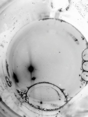 Microbiology Science Research Biology Scientific Experiment Close-up