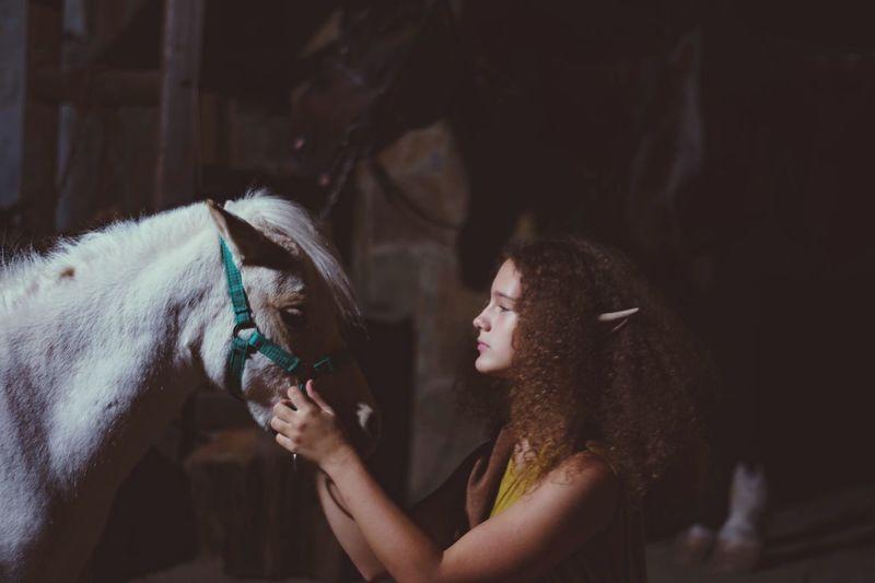 Эльф и пони