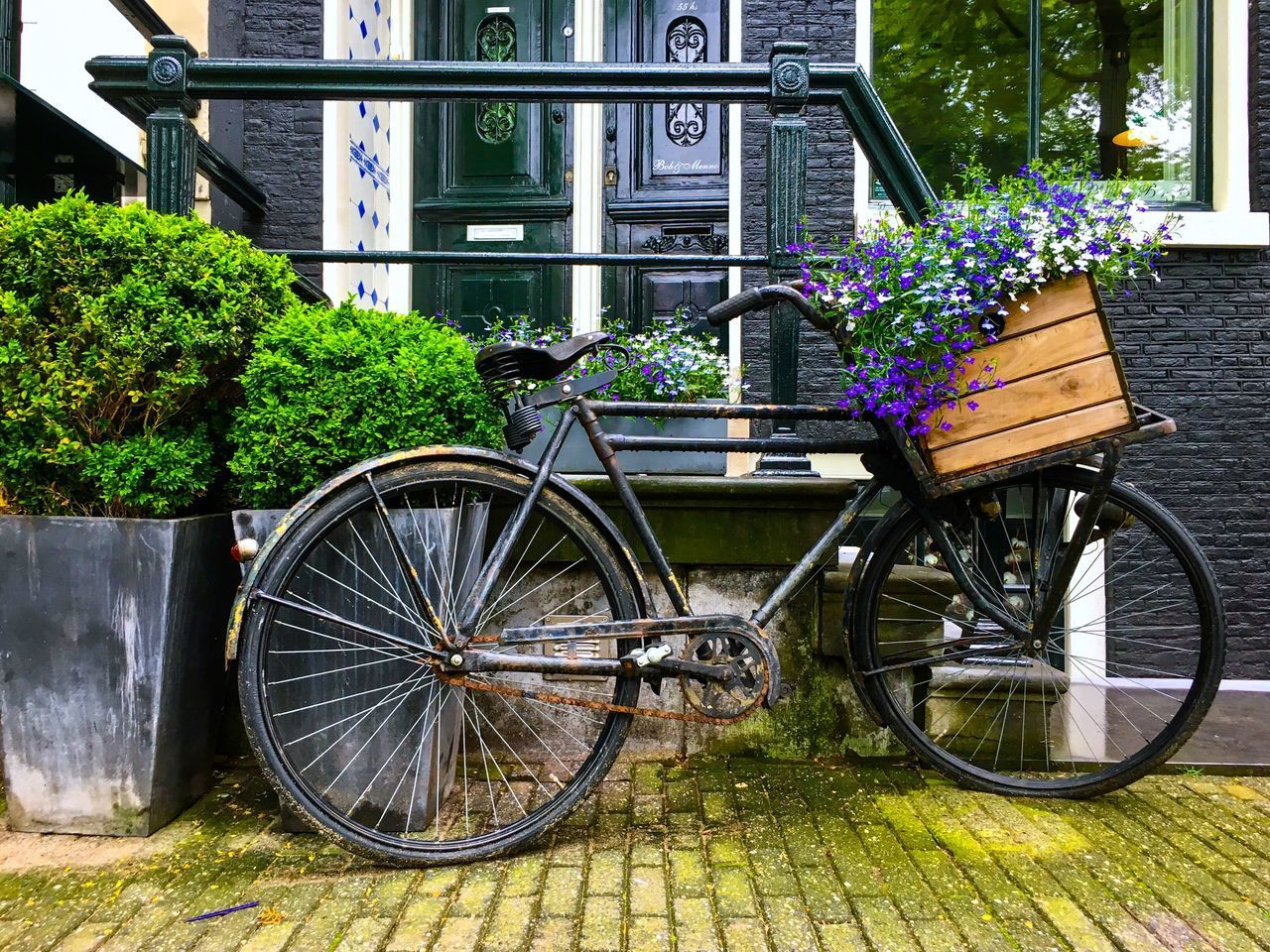 plant, building exterior, flower, nature, bicycle, flowering plant, day, growth, transportation, built structure, architecture, no people, land vehicle, outdoors, mode of transportation, green color, window, wheel, building, leaf, flower pot