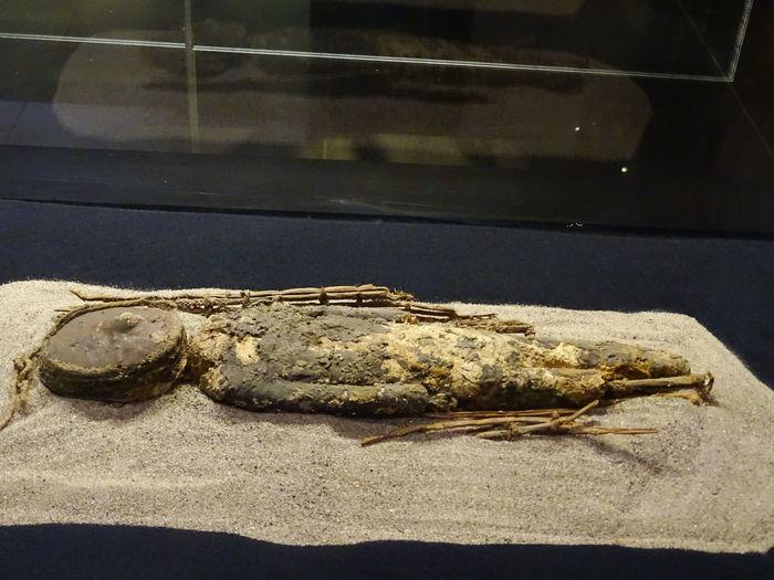 Archaeological Museum Archaeological Museum, San Miguel De Azapa Arica Atacama Desert From 5000 BC To 3000 BC Mummies Mummies Chinchoro Mummies Chinchorro Chile