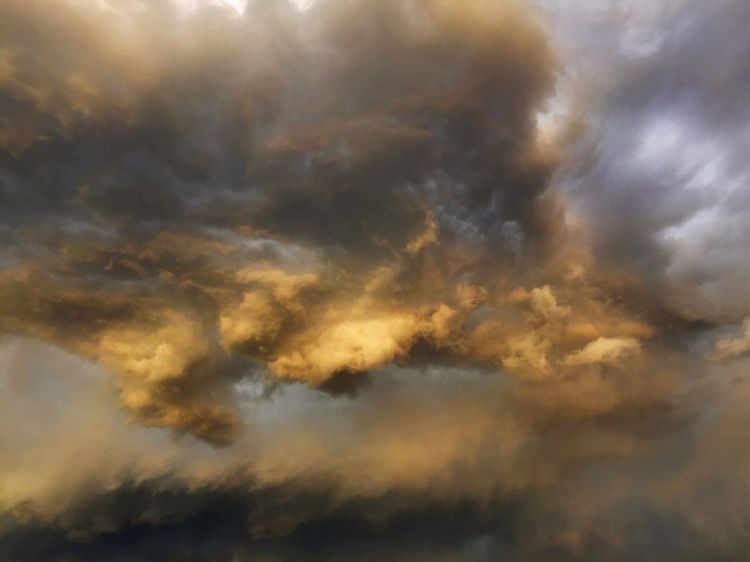 Low Angle View Beauty In Nature Cloudscape Scenics Sky Cloud - Sky Tranquility Nature Atmospheric Mood Tranquil Scene Sky Only Majestic Environment Cloud Atmosphere Dramatic Sky Cloudy Storm Cloud Fluffy Full Frame Utah Cache Valley Utah Solitude Beauty In Nature Thunder Clouds