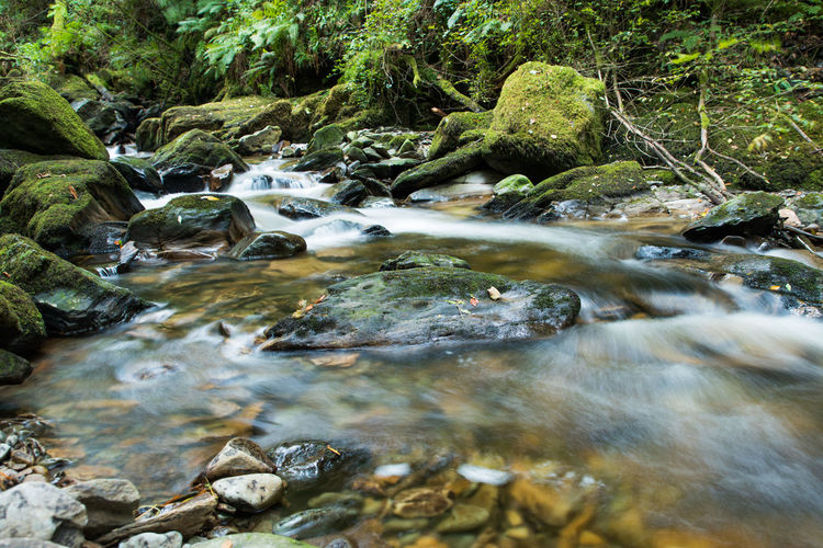 Scenic view of stream by rocks