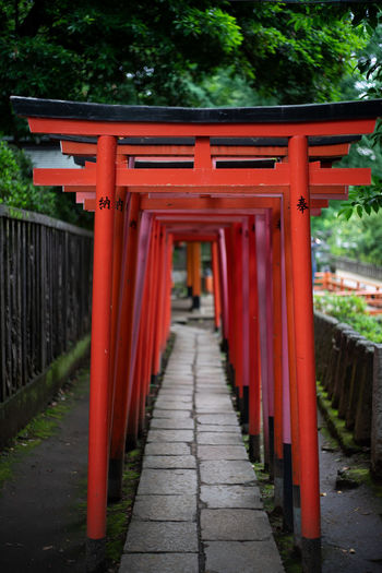 Tokyo Torii Gate Architectural Column Architecture Belief Built Structure Diminishing Perspective Direction Footpath Gate In A Row No People Place Of Worship Red Religion Shrine Spirituality The Way Forward Tree The Architect - 2018 EyeEm Awards Plastic Environment - LIMEX IMAGINE The Street Photographer - 2018 EyeEm Awards The Traveler - 2018 EyeEm Awards The Creative - 2018 EyeEm Awards