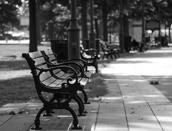 "Not Park Bench Thursday A Parkbench on a Wednesday because, if I remember the rules of the game correctly, Tom, @Nikon_T , ya can't post post a pic of a parkbench that's located in a park in ""Not Park Bench Thursday"" on a Thursday and I didn't wanna wait 😜. Focus On Foreground Outdoors No People Day Nature Park City Blackandwhite Black & White Lost"