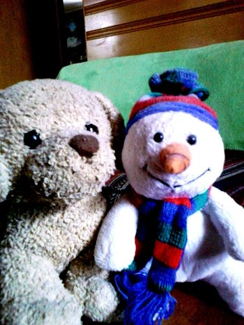 my watch puppy and snowman Cheese! Safehaven Winter Warmth Brothers