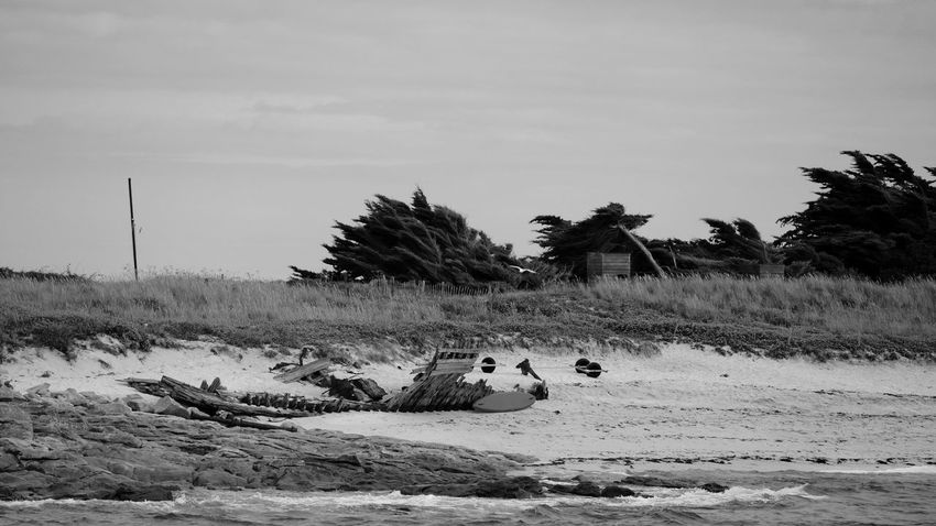 Archipelago Black & White Bretagne Glénan Islands Skeleton Beach Beauty In Nature Black And White Blackandwhite Bnw Bnw_collection Breizh Bw Bw_collection Cloud - Sky Day Landscape Monochrome Nature Ocean Outdoors Sand Tranquil Scene Wind