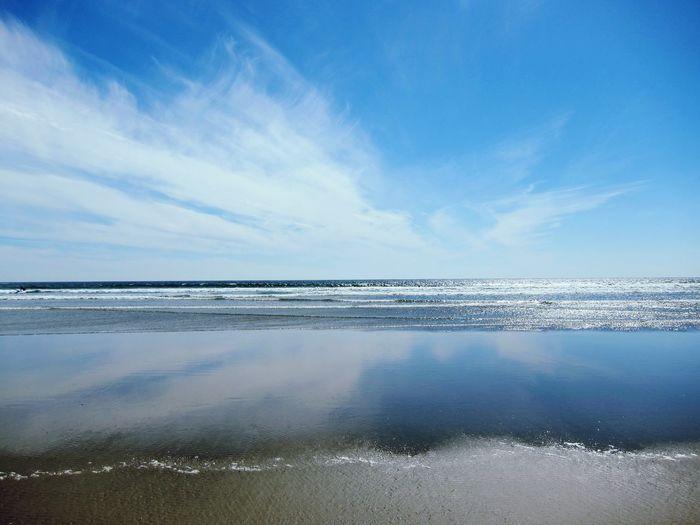 Vast Sea Nature