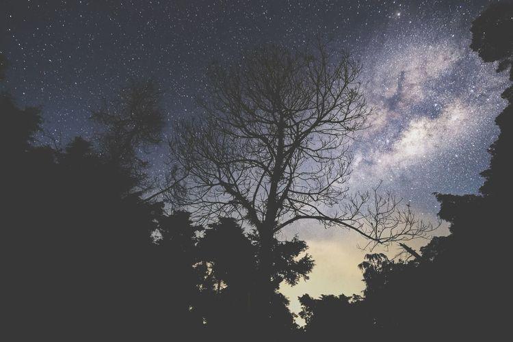 nightscape at