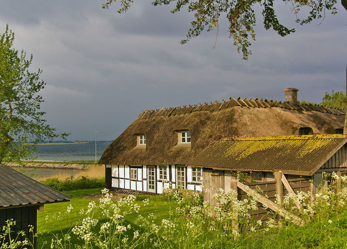 Traditional timber-framed thatched Danish farmhouse on the island of Lyø, Denmark Farm Farmhouse Rural Architecture Beauty In Nature Building Exterior Built Structure Cottage Countryside Grass House Nature No People Outdoors Plant Rain Clouds Roof Scenics Sky Thatched Cottage Thatched Roof Timber Frame Timber-framed Tree Water