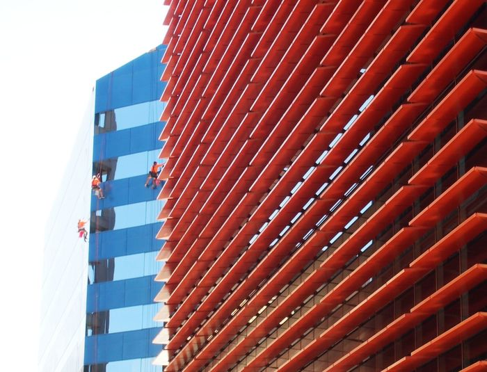 Abseiling Architecture Buildings Linear Pattern Pattern Red Window Cleaners Urban Urban Geometry Colour High Angle View Hanging Abseilling Working