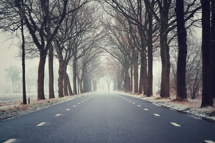 Life is like an open road.. The Way Forward Road Outdoors Transportation Nature Tranquil Scene Fog Tree Scenics Desaturated Forest EyeEm Gallery Streamzoofamily No People Winter Ice Eyeemphotography EyeEmBestPics