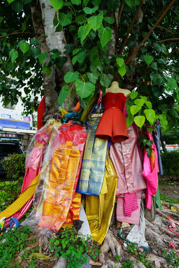 Clothes drying on plant against trees