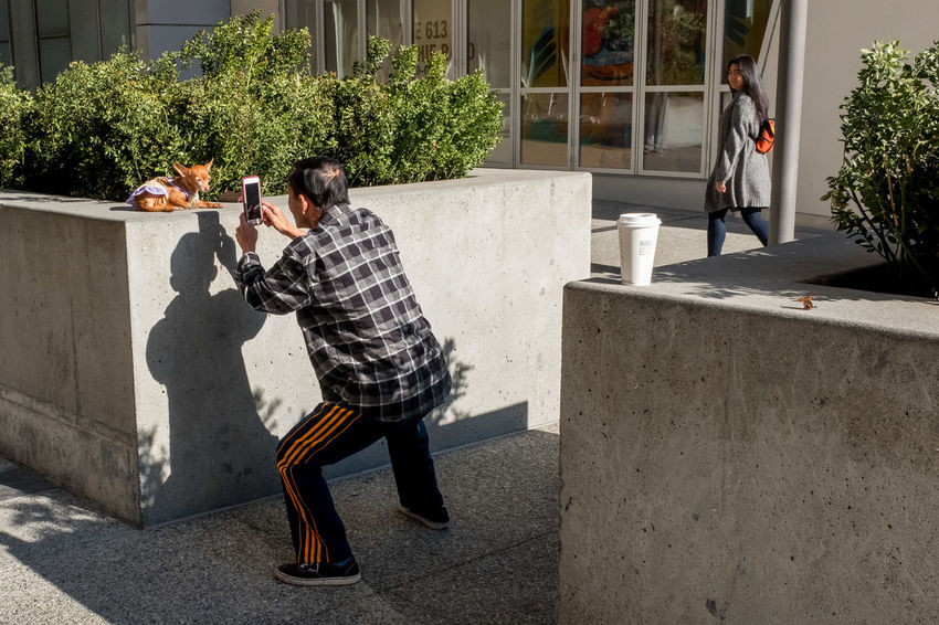Untitled. San Francisco, 2017. Street Photography Dog San Francisco Full Length Shadow Sunlight Standing Togetherness Architecture Building Exterior Casual Clothing Canine