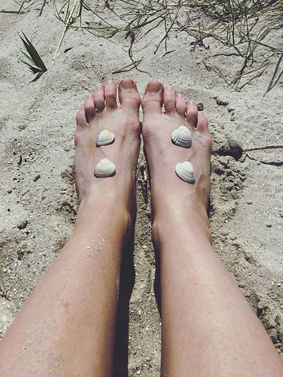 Feet Feets Füsse Fuß Barefoot Human Foot Relaxation Bare Feet Feetselfie Mussels Shell Shellsheddyphotography Shells🐚 Muszle Nordsee Feeling🐚🌾 Deutschland Germany Beauty In Nature Nordsee North Sea Schillig Chilling Chillin' Hopes And Dreams Hope