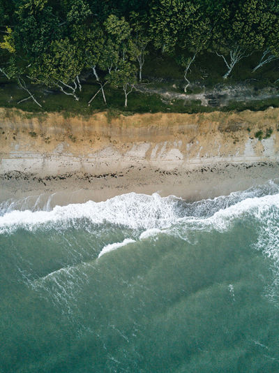 Aerial view of sea by trees