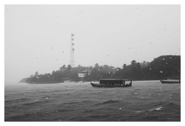 Rain Wet Black