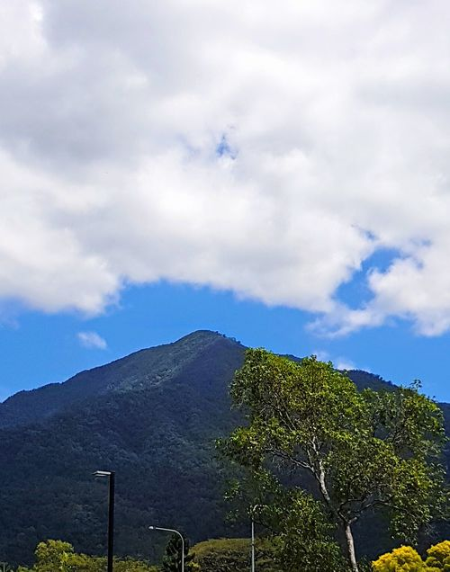 Mountain lamp posts trees sky clouds Lamp Posts Sky Beautiful Day No People Outdoors Nature Day Beauty In Nature Scenics Tropics The Week On EyeEm Growth Low Angle View Tranquility Cloud - Sky Mountain Tree Tranquil Scene
