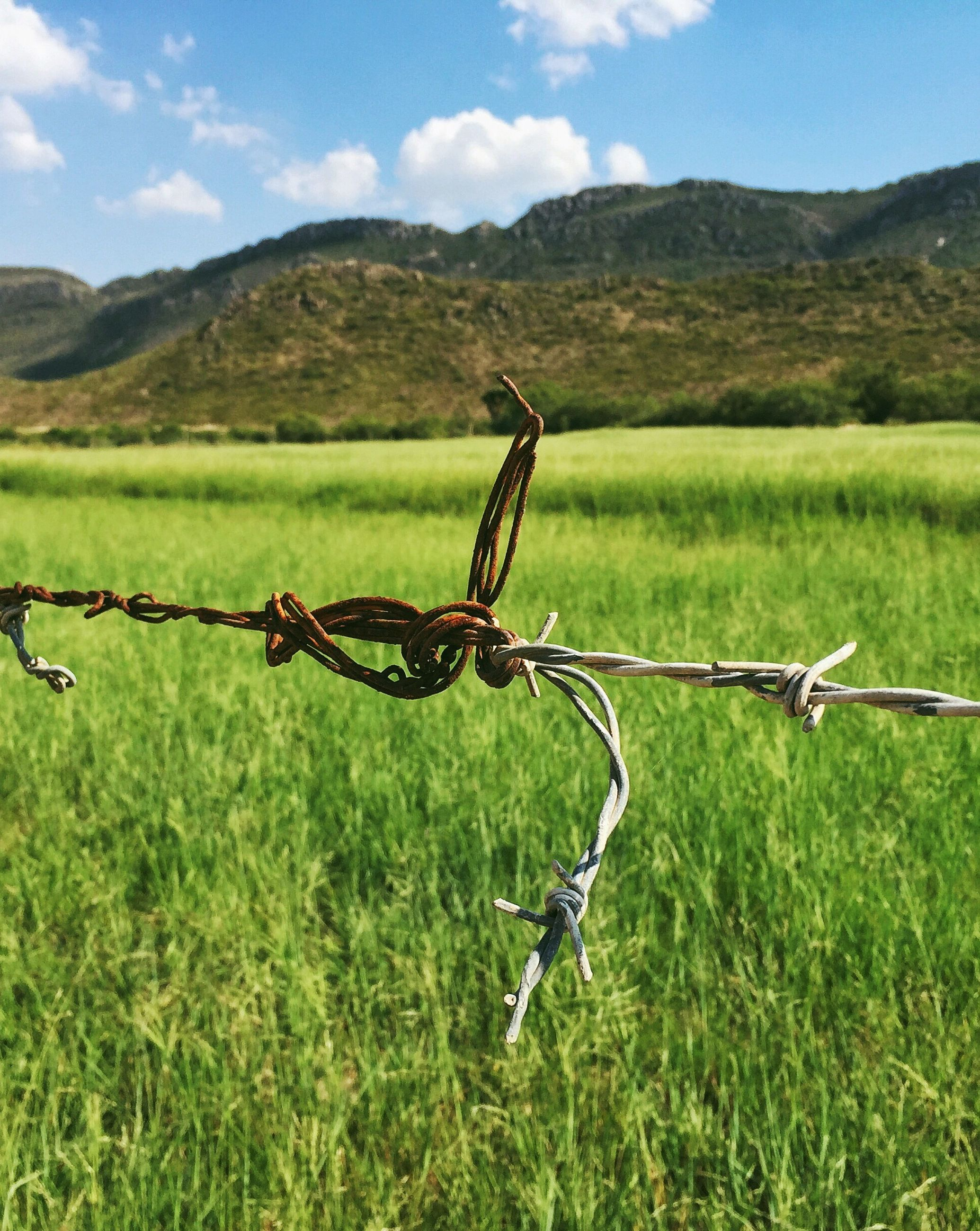 barbed wire, fence, landscape, field, safety, grass, mountain, protection, security, tranquility, sky, nature, tranquil scene, grassy, focus on foreground, beauty in nature, day, metal, scenics, outdoors