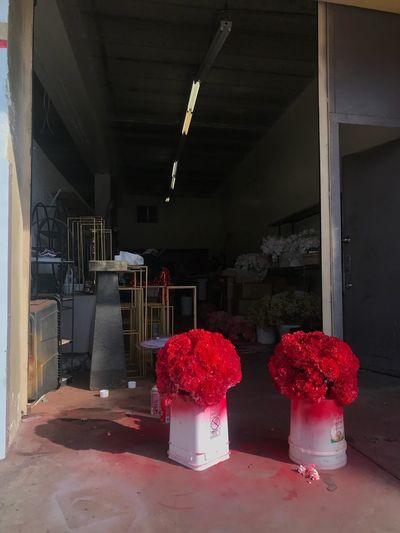 Red flowers on table in building
