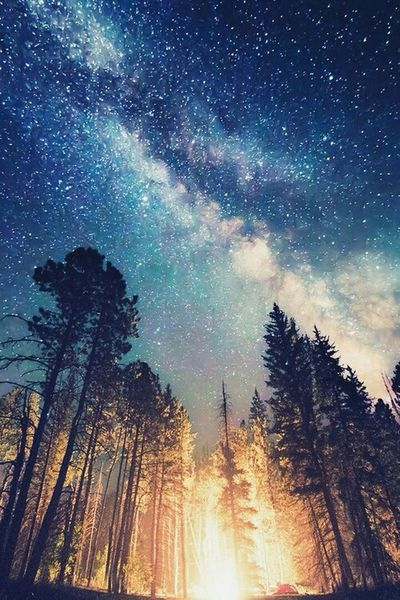 Trees Stars Clouds And Sky Purple EyeEm Nature Lover Great Views Beautiful