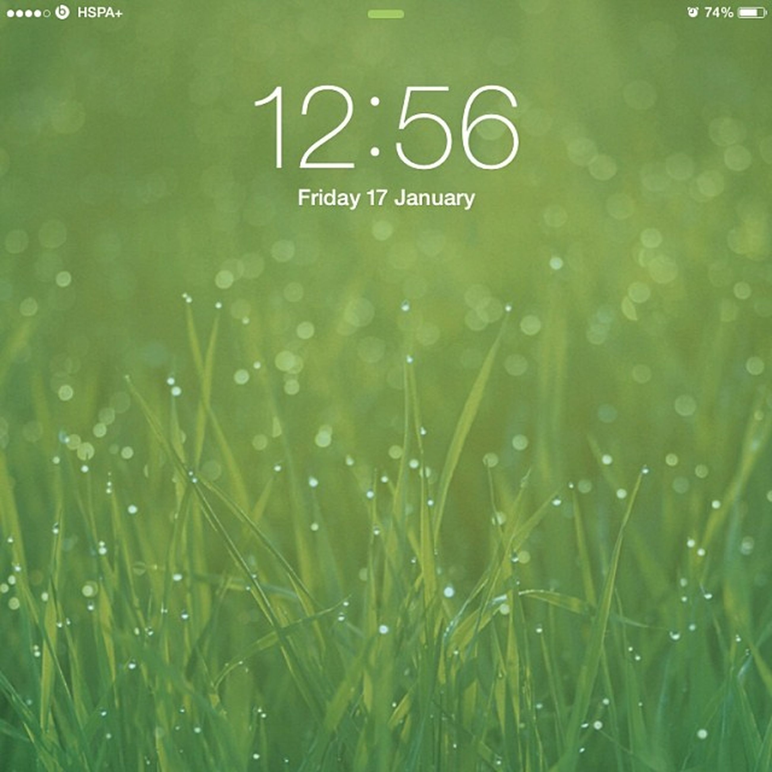 text, green color, western script, communication, grass, full frame, close-up, backgrounds, water, growth, wet, nature, drop, field, no people, outdoors, day, green, rain, plant