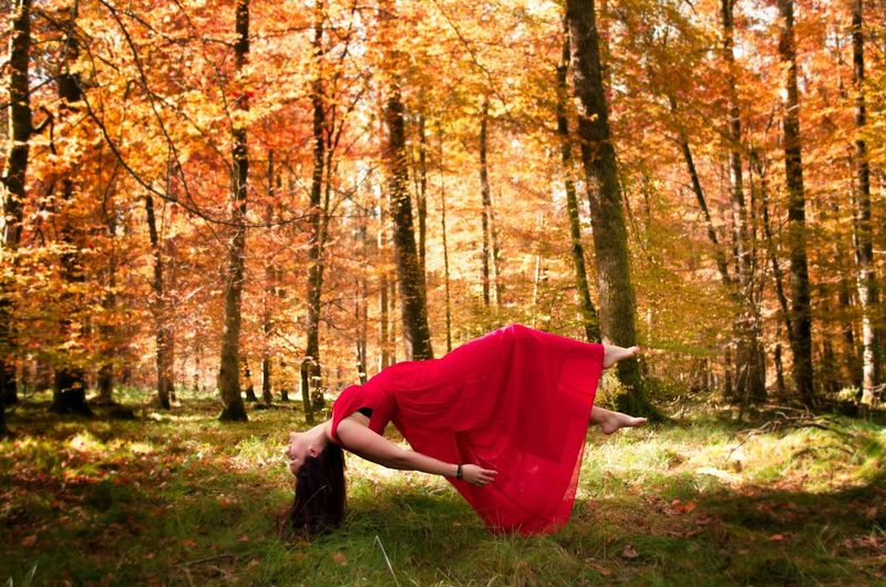 Woman Wearing Red Dress Floating Against Trees In Forest During Autumn